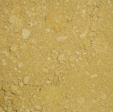 arena-albero-cernido